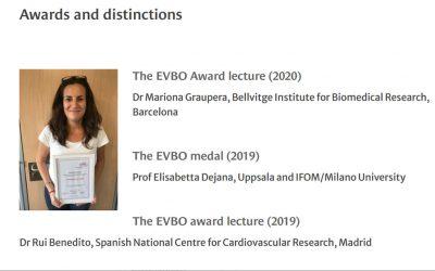 Mariona Graupera, EVBO Award Lecture 2020